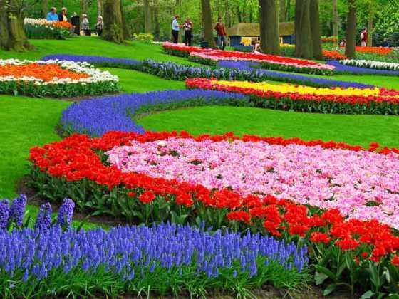 jardines de Keukenhof